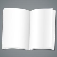 Empty brochure design template