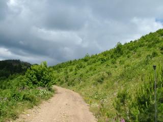 İda mountain, forest, Kazdağı, Kazdağları,Orman