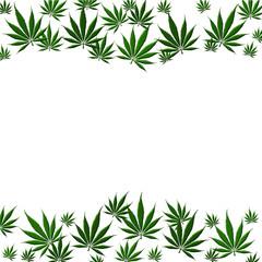 Marijuana Leaf Background