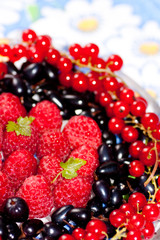 plate with berries of raspberry, currant, bilberry