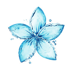 Printed kitchen splashbacks Water flower made of water splash