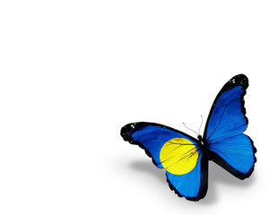 Palau flag butterfly, isolated on white background