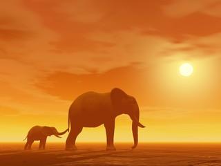 Mum and little elephant