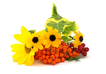 Fresh yellow flowers, ashberry, viburnun and hedera  isolated on