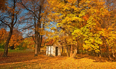 Small house in the forest in autumn