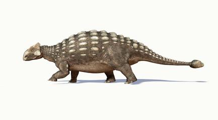 Obraz Photorealistic 3 D rendering of an Ankylosaurus. Side view. - fototapety do salonu