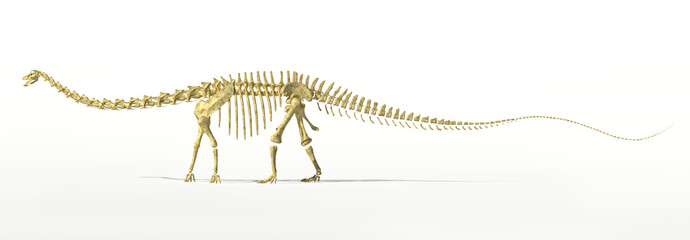 Diplodocus dinosaur full skeleton photo-realistc rendering.