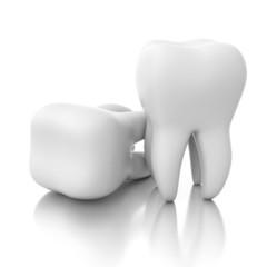 two teeth isolated on mirror floor