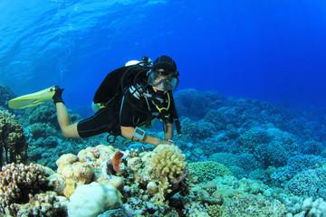 Woman Scuba Diver explores coral reef