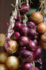 White and red onions hanging on a string