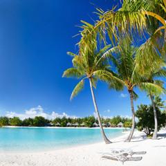Fototapete - Perfect beach on Bora Bora