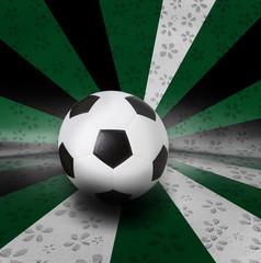 soccer football on color background seem nation flag