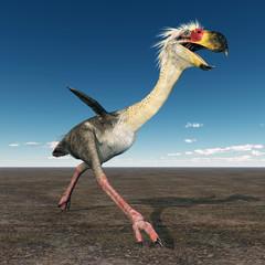 Terrorvogel Phorusrhacos