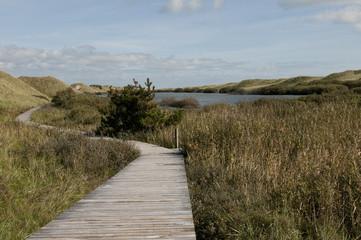 Dünenlandschaft Nordseeinsel Amrum