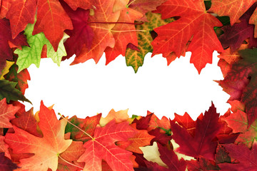 fall leafs with text space