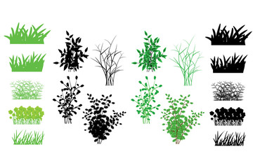 Grass. many kinds of