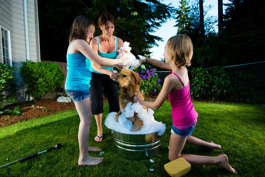 Family giving dog a bath