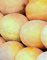 Galia melons as background