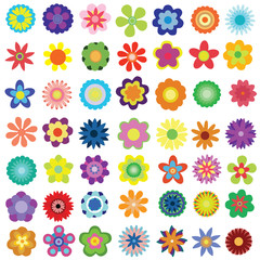 Set of different bright flowers