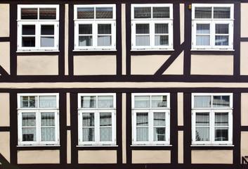 Wall Mural - Windows