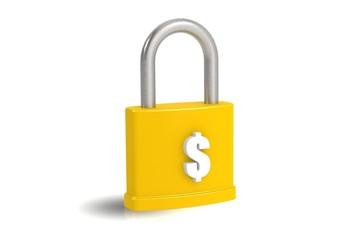 Money and padlock
