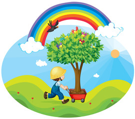 Door stickers Rainbow boy carrying tree in a trolley