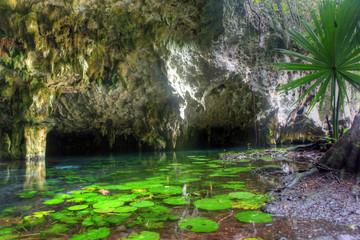 Mexican cenote