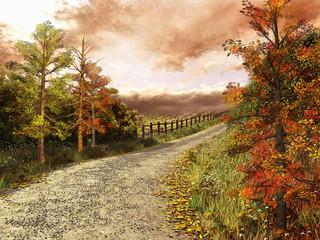Wall Mural - Droga przez las w jesiennych barwach