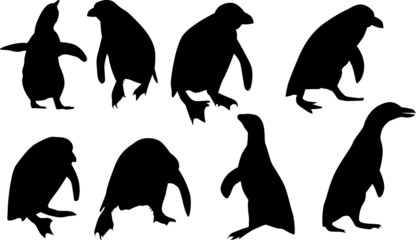 eight penguin silhouettes isolated on white