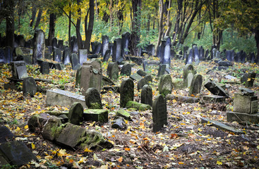 Old graves at historic Jewish cemetery in Warsaw, Poland