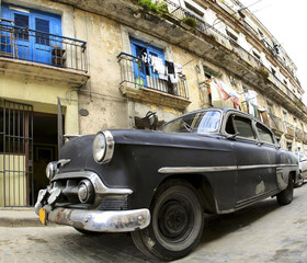 Garden Poster Cars from Cuba Classic old car in the Havana