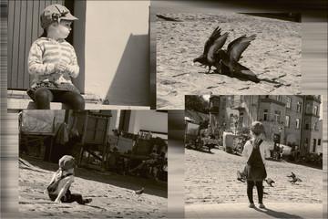 Маленькая девочка кормит голубей