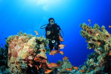 Scuba Diver explores coral reef