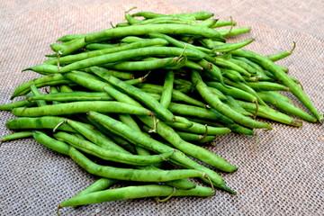 Fresh Harvested String Beans on Burlap