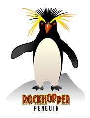 Rockhopper Penguin illustration