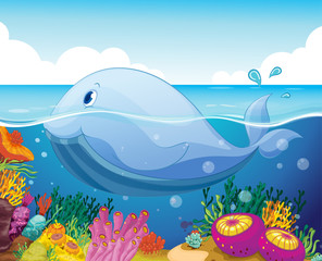 Poster Submarine fish and coral in the sea