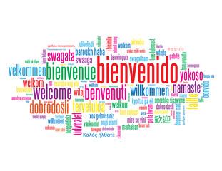 """Nube de Palabras """"BIENVENIDO"""" (bienvenida servicio al cliente)"""