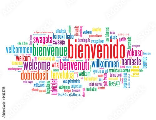 Web Design Different Languages