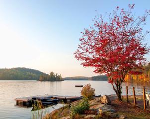 Fototapete - Single Red Maple Tree Next To Lake Dock