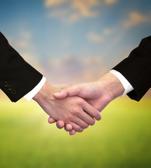 Two business male hands about to shake hands
