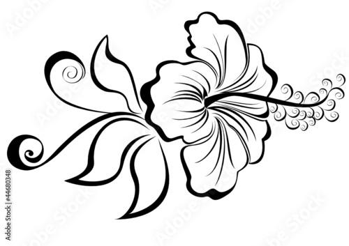 Hibiscus fichier vectoriel libre de droits sur la banque - Dessin de salamandre a imprimer ...