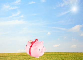 pig-coin box costs on a meadow on  background of  blue sky