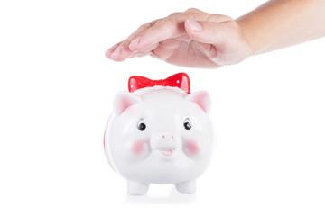 female hand preserves a pig-coin box