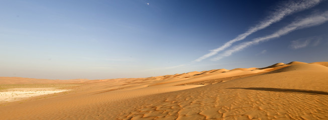 Canvas Prints Drought Abu Dhabi's desert dunes