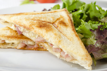 Bacon & Cheese Toastie served with salad. Close up.