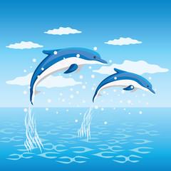 Photo sur Aluminium Dauphins Dolphins.