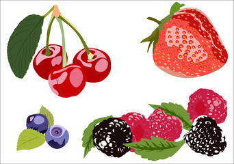 Realistic berries with leaves isolated on white background