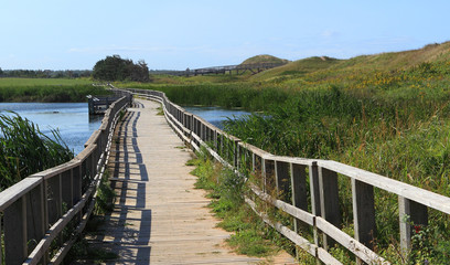 A Wooden Pedestrian Bridge