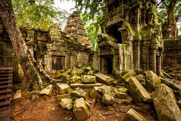 Tree of Ta Prohm, Angkor Wat