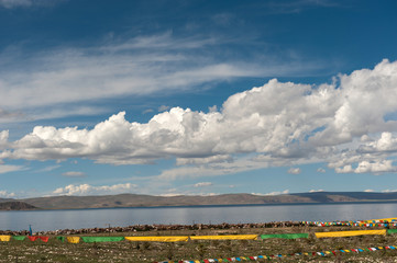 tibet lake in summer